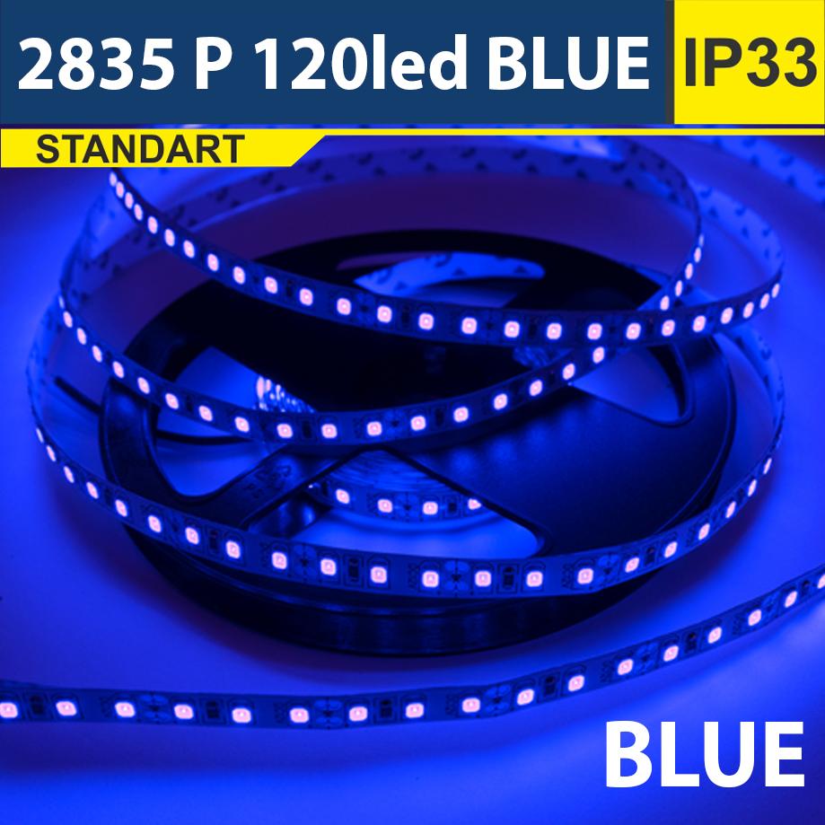 Светодиодная лента SMD2835 120led blue