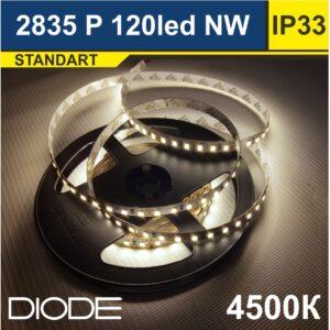 Светодиодная лента SMD2835 120led 4500К